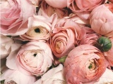 Things to Consider when Deciding on your Wedding Flowers for the Big Day