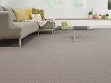 Dry Carpet Cleaning Vs Steam Carpet Cleaning: Which one to Choose?