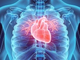 Circulatory System Diseases and Risk Factors