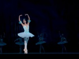 Want to become a ballerina? Here's what you should know