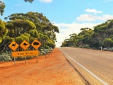 Retirement on the Road: Planning a Post-Retirement Australian Road Trip