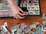 What Actually Do Stamp Collectors Do?